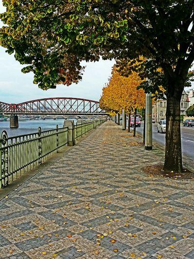 Praga River Street Autumn Colors Bridges