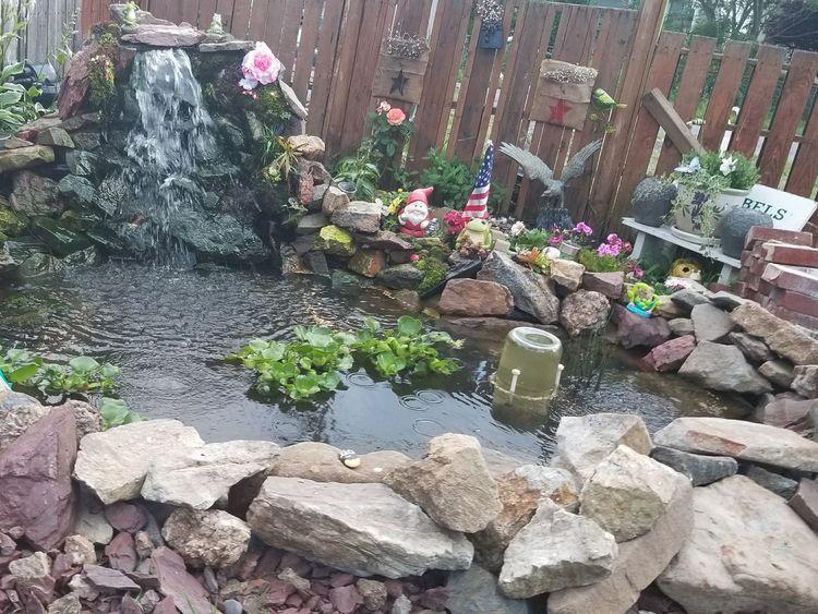 Our pond 2 EyeEmNewHere The Week On EyeEm