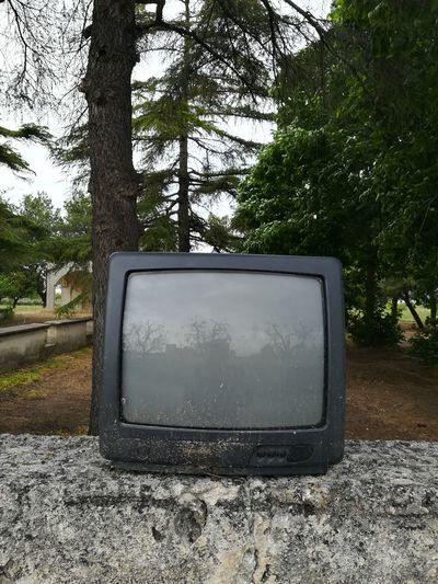 Tree The Media
