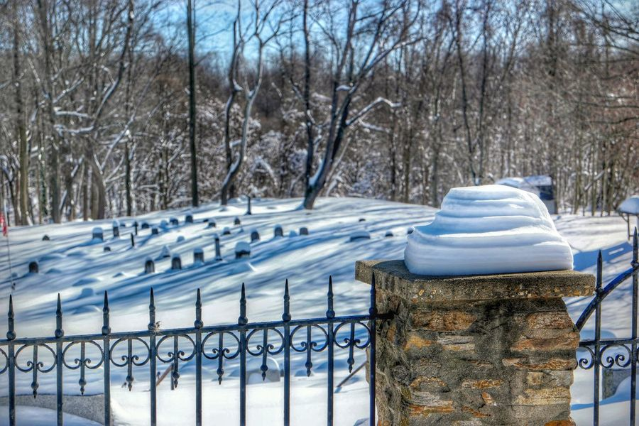 Blizzard 2016 Cemetary Beauty Snowy Snow Covered Snow Trees Stone Fence