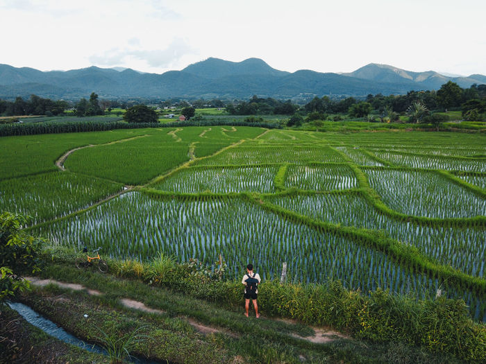 High angle view of man standing by agricultural field against sky