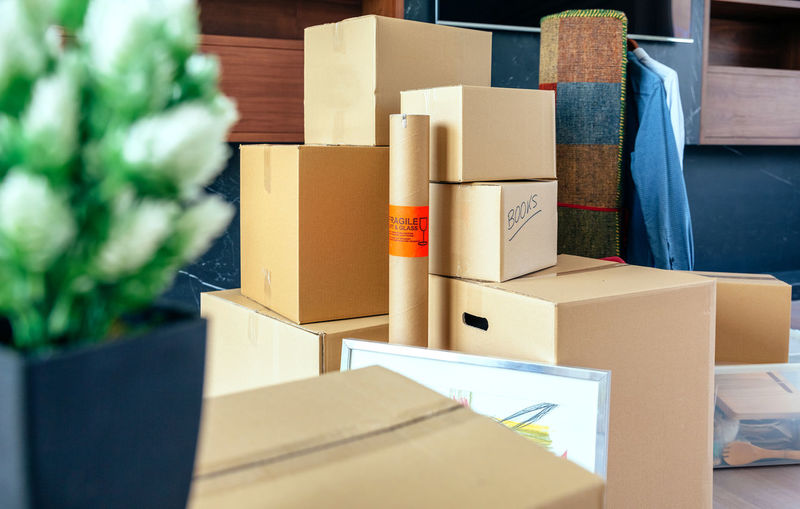 Moving with stacked boxes and plant at new home Architecture Box Decor Horizontal Modern Moving Apartment Boxes Cutter Design Empty Estate Furniture Home Interior House Living Room Luxury Meter Move New Home Nobody Relocation Space Spacious Style