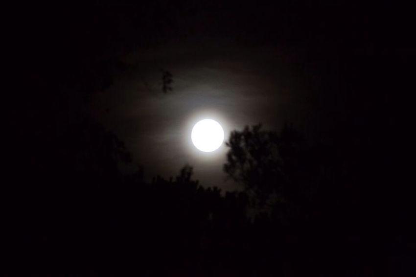 La Luna De Armstromg