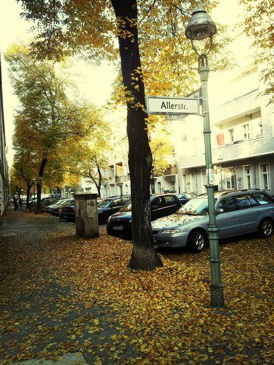 Herbst in Berlin