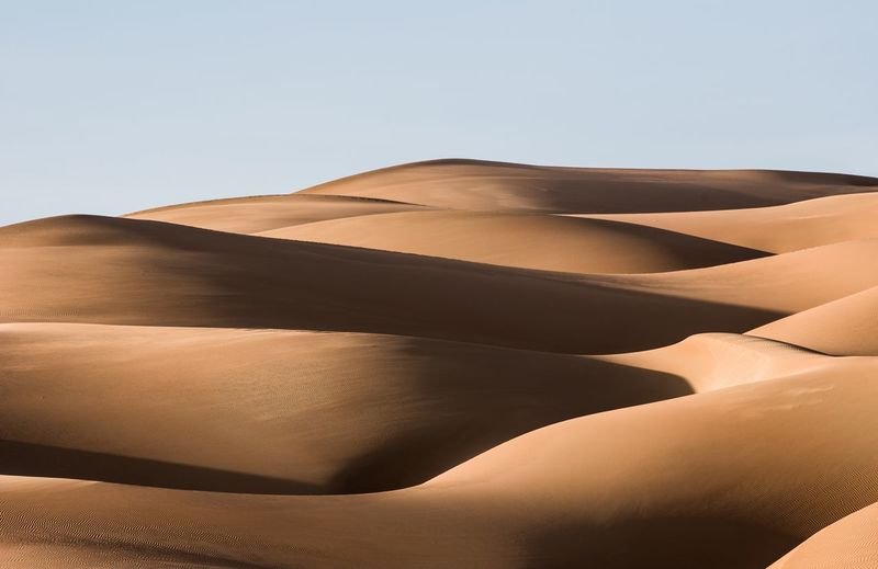 Desert dunes Sand Sand Dune Land Desert Sky Landscape No People Environment Day Nature Beauty In Nature
