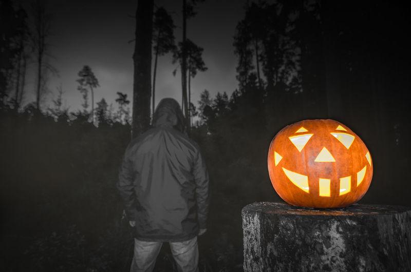 Full frame shot of illuminated pumpkin against trees at night