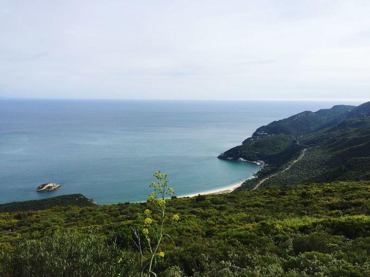 Protecting Where We Play Life Nature Sea