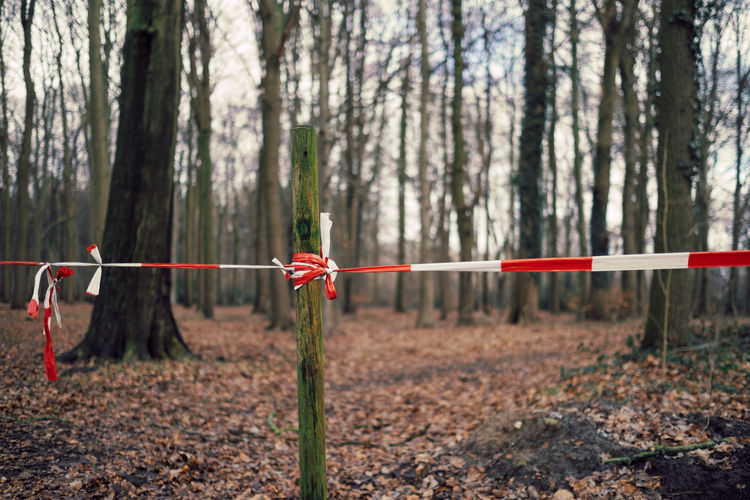 Way closed by barrier tape in in forest