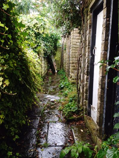 Weather Wonders Passageway after the rain.
