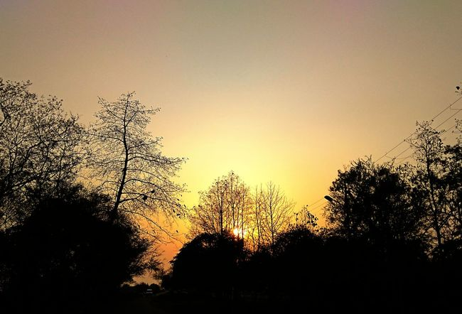 Sunset_collection Sunset Silhouettes Bhilai Sunset Silhouette Nature Outdoors Welcome To Black Art Is Everywhere Paint The Town Yellow Perspectives On Nature