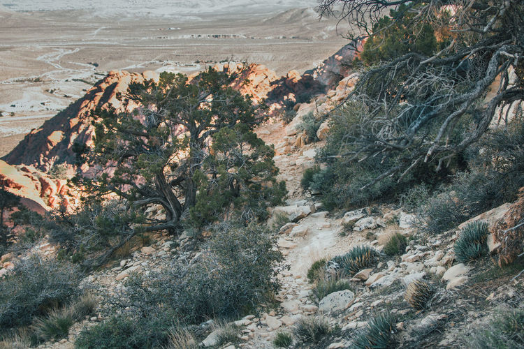High Angle View Of Desert Landscape