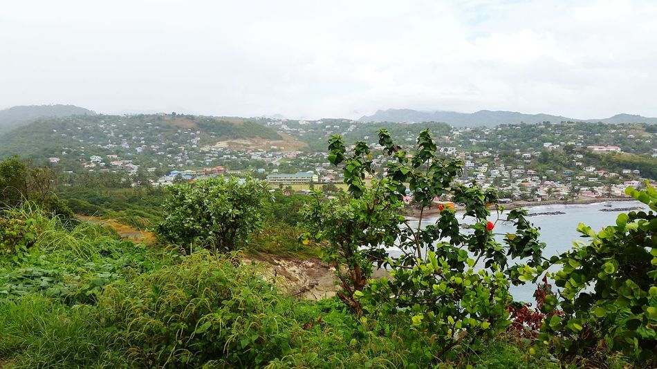 Dennery...fishing village... Village Lifeinthetropics Islandlife Saintlucia StLucia Lush Green Viewpoint