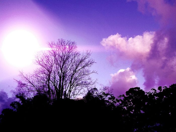 Violet By Motorola Color Explosion Urban4filter Nature Eyemnaturelover Evening Sky I'll Color Your Sky Artsy Scenery Nature_collection