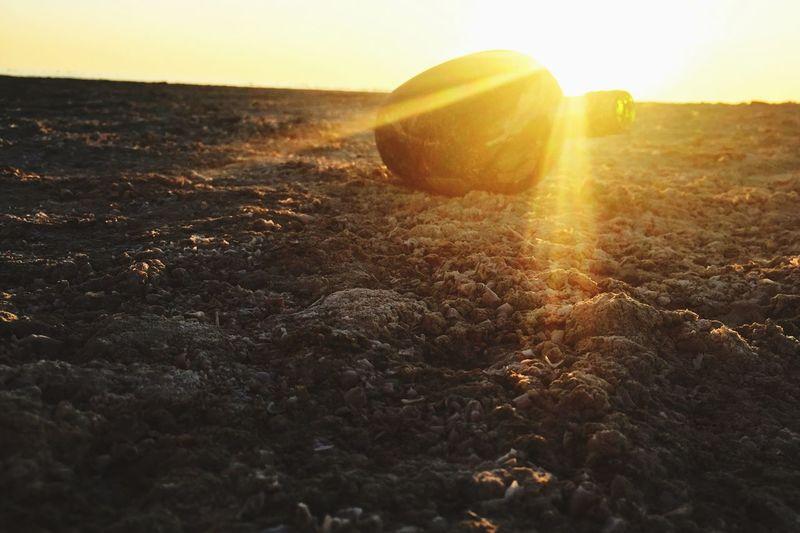 Salton Sea treasures Desert Lost City Abandoned Nature Sunlight Sunset No People Outdoors Landscape Day EyeEmNewHere