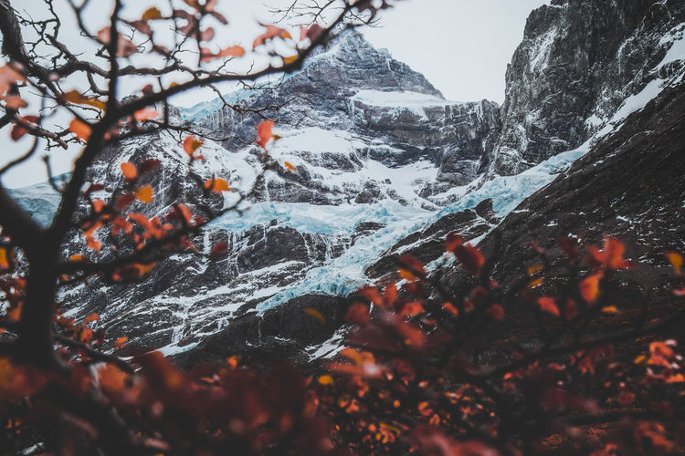 Waterfall of glacier Autumn National Park Adventure Beauty In Nature Branch Cold Temperature Day Environment Frozen Glacier Land Landscape Mountain Mountain Peak Nature No People Outdoor Photography Outdoors Scenics - Nature Sky Snow Torres Del Paine Tranquil Scene Tranquility Tree Winter