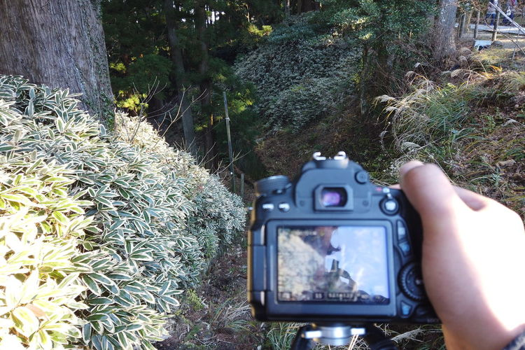 Japan Travel Destinations Countryside Lifestyles Japan Travel Japan Trip  POV Personal Perspective Legs Walking Mountain Man Photographer Photography Selfie Strolling Travel Traveling Exploring Shadow Shoes Looking Down Camera DSLR Fashion Stairs Shooting Photos Taking Photos Business Working Photography Themes Plant Technology Photographing Camera - Photographic Equipment Nature Tree Activity Photographic Equipment Screen Digital Camera One Person Growth Human Hand Real People Day Wireless Technology Land Hand Outdoors