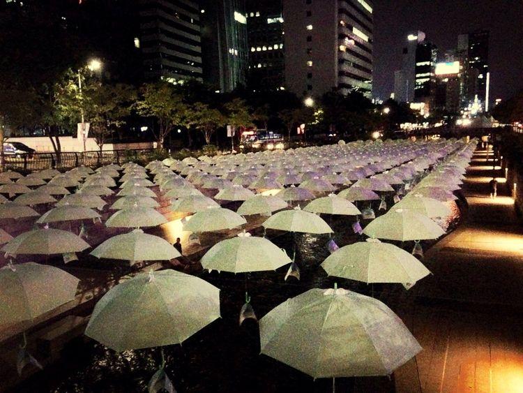 Chungkyechun Embrella 우연히 본 예쁜 우산들
