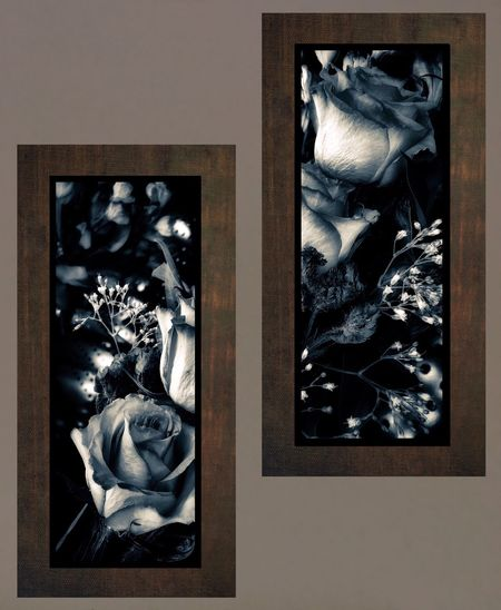 Floral Decoration Textures And Surfaces Textured  Rose - Flower Taking Photos Wall Black And White Picture Frame Frame No People Indoors  Photograph Close-up Day