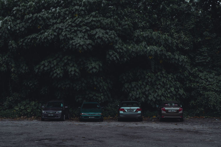Dark Moody Car Parking Lot with Green Trees Behind Mode Of Transportation Transportation Motor Vehicle Tree Land Vehicle Car Plant Nature No People Night Road Outdoors Stationary Growth Parking Land Street Beauty In Nature Ijas Muhammed Photography Dark Moody Artist Vehicle
