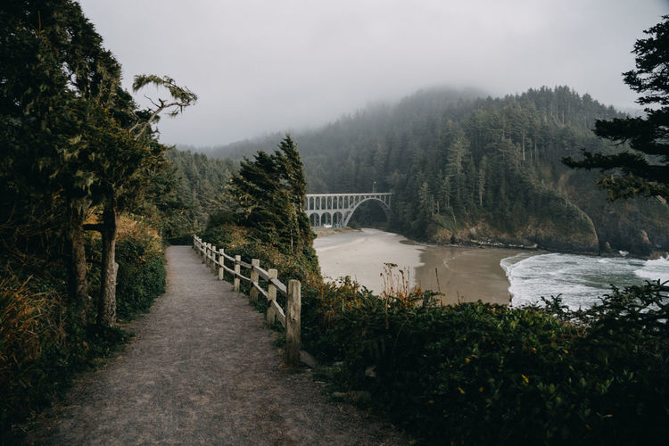 Bridge over river amidst trees against sky in oregon