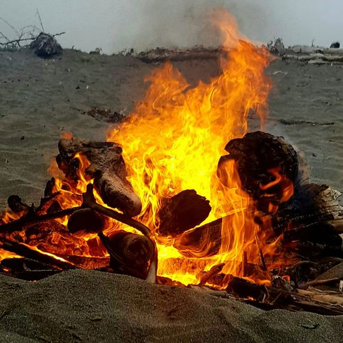 A Evening in the Beach. Fire Firewood Flame Burning Firewood Heat Outdoors Bonfire Campfire Glowing Staying Warm For This Cold Weather Sand Sandbeach