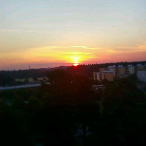 Sunrise in sweden Enjoying The Sun