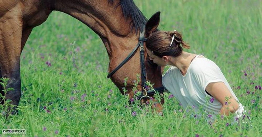 @Instag_app Horses Horse Horsesofinstagram Pentax Wolfworx Horses_of_instagram Horsestagram Instahorses Mane Instagood Grass Field Farm Nature Goddessonhorseback Ilovemyhorse Beautiful Pretty Photooftheday Bond Love Trust
