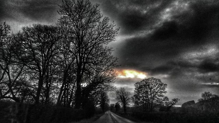 Tree Sky Silhouette Tranquility Outdoors Distance Don't Mean Shit. Backgrounds Highway Black And White With A Splash Of Colour Black And White With A Hint Of Colour Hdr_edits Hello Darkness My Old Friend Nature No People Roads DistanceMeansNothingWhenSomeoneMeansEverything sunset #sun #clouds #skylovers #sky #nature #beautifulinnature #naturalbeauty photography landscape
