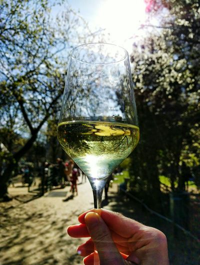 Spring in a glass Enjoying Life EyeEm Best Shots EyeEm Gallery My Fuckin Berlin Nature Minimalism Spring Springtime Urban Spring Fever