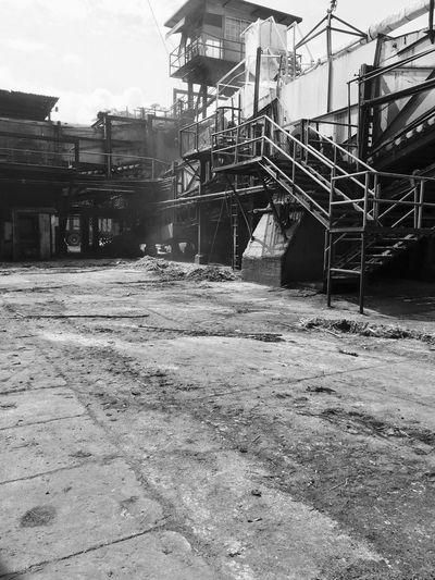 Sugar Mill Industrial Working Hard