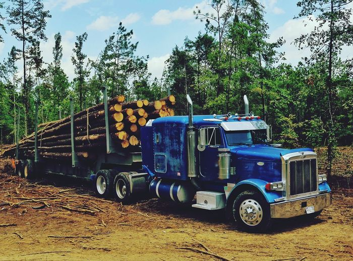 Logging Logging Truck 18wheeler Trucking Logging Trees Tree Logging Logs Logs On Truck Tree Falling Falling Trees Blue Truck Loadedtruck Heavyload Savethetrees Treehugger Gotwood Logging Equipment Woodpile Logging Road Logging Industry Logging Zone Logging Site Logging Town