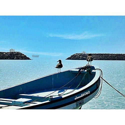 الميناء _ ريسوت سلطنة عمان ظفار