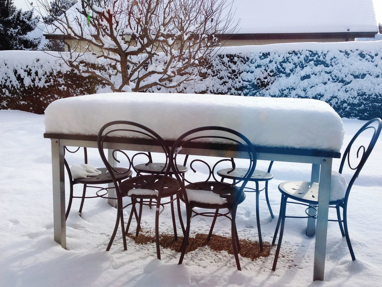 winter, snow, cold temperature, weather, nature, white color, table, chair, day, outdoors, no people, tree, beauty in nature, close-up