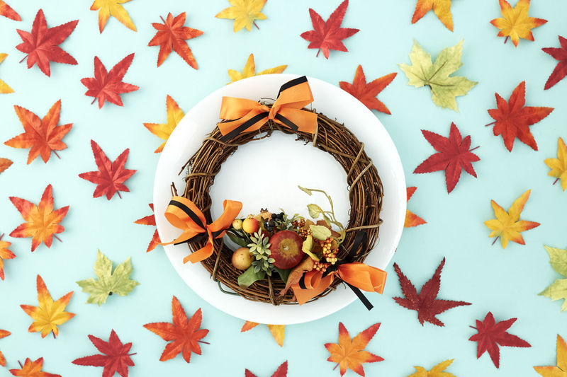 White dish with wreaths and autumn leaves decorative Halloween on pastel pale blue background, with copy space for text. Flat lay. Sales Holiday Flyer Banner Poster Travel Traveling Traveler Vacation Trip Sale Template Mockup Abstract Art Autumn Leaves Falling 2019 2020 Wreath New Year Halloween Autumn Leaves Autumn Background Plate Minimal Flat Lay Fall Background Leaf Design Frame Orange Concept Composition Green Maple Bright Pattern Forest Decoration Star Shape Shape No People Close-up Food And Drink High Angle View Indoors  Food Still Life Animal Wildlife Animal Focus On Foreground Directly Above Animal Themes Nature Star Anise Fruit Day