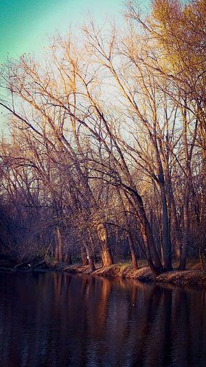 Beautiful scenery! Long walk around the river!