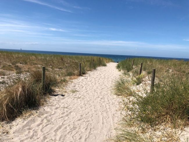 Sunshine Ostsee Meer Nature_collection Nature Photography Sky Plant Tranquility Tranquil Scene Grass Beauty In Nature Sea Scenics - Nature Land Horizon Sand Nature No People Water Beach Outdoors Grass Land Nature Beauty In Nature Landscape