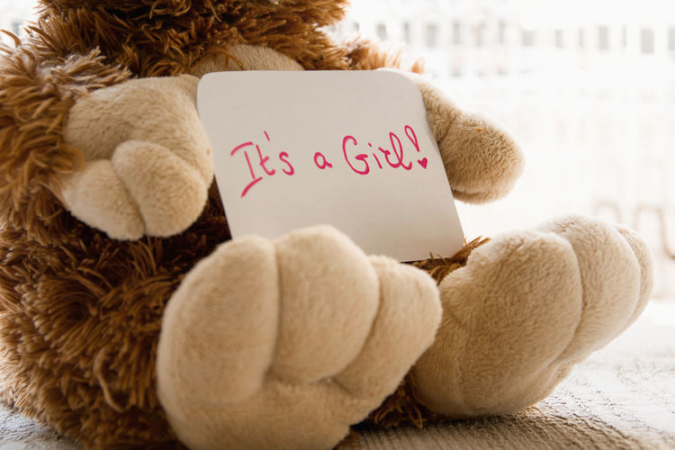 Close-up of text on paper with teddy bear on seat