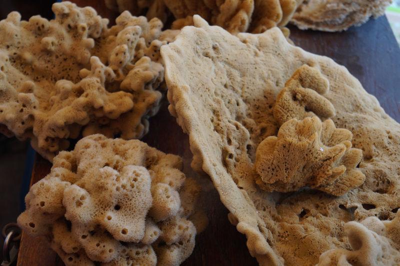 Sea Sponges For Sale At Symi