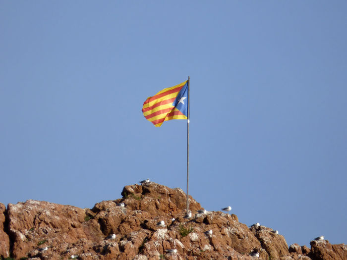 Flag with seagulls perching on rock against clear sky