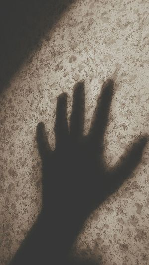 casting shadows Shadow Shadows Hand Arm Calm Chill Aesthetics Books Lomo Photography Photographer Photocamera Soul Fingers Ceiling Lights Handprint Ghost Vampire Palm Horror Stop Gesture