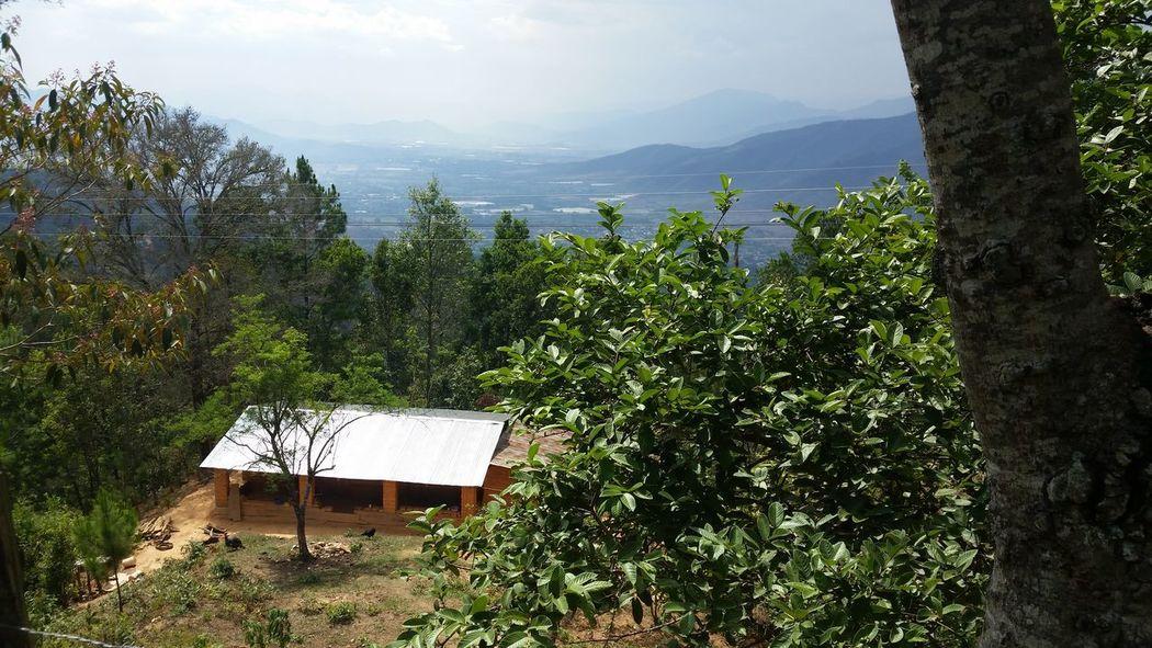 Al Aire Libre Paz Y Tranquilidad Arboles , Naturaleza Verde Cielo Despejado Cabaña Mountain No People Tree Day Outdoors Growth Nature Beauty In Nature Sky