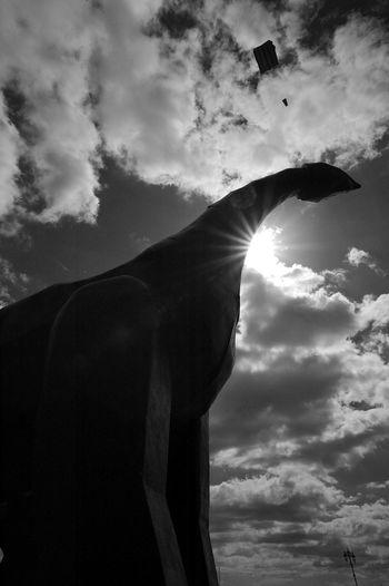 Sunnysaur Blackandwhite Black And White Dinosaur Kite Clouds Clouds And Sky Towering Shadow