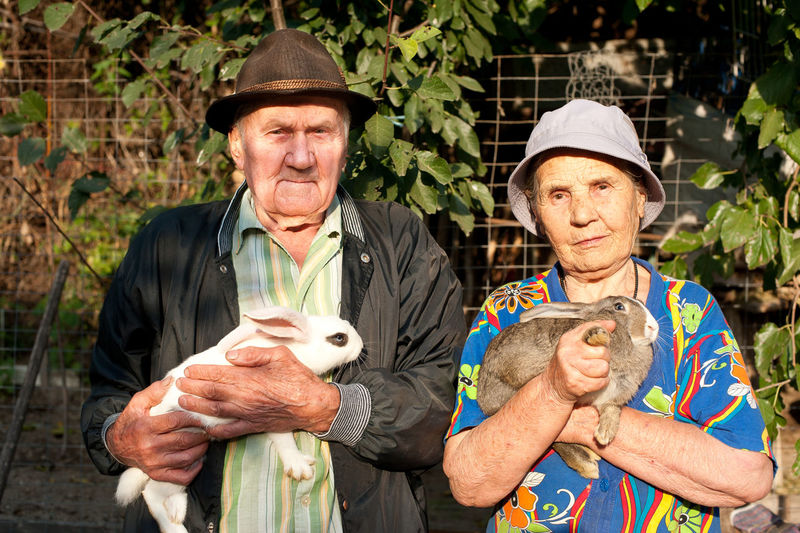Close-up of senior couple with rabbits