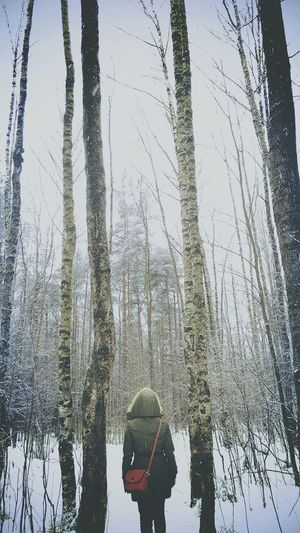 People Photography Relaxing Forest Snow Stroll