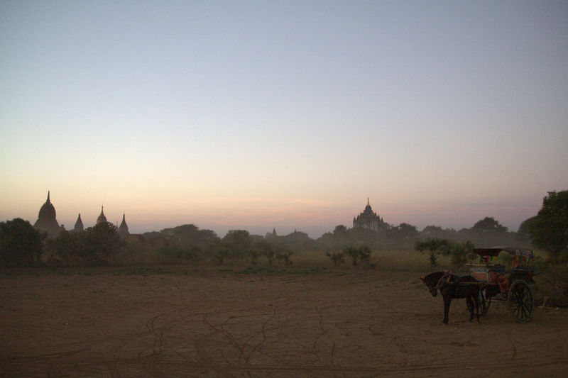 Horse cart at bagan archaeological zone against sky during sunset