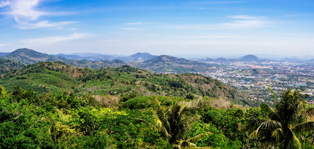 Phuket panorama Exotic Green Palm Panorama Phuket Thailand Beauty In Nature Day Hill Island Landscape Lush Nature No People Outdoors Scenics Sky Tree Tropical
