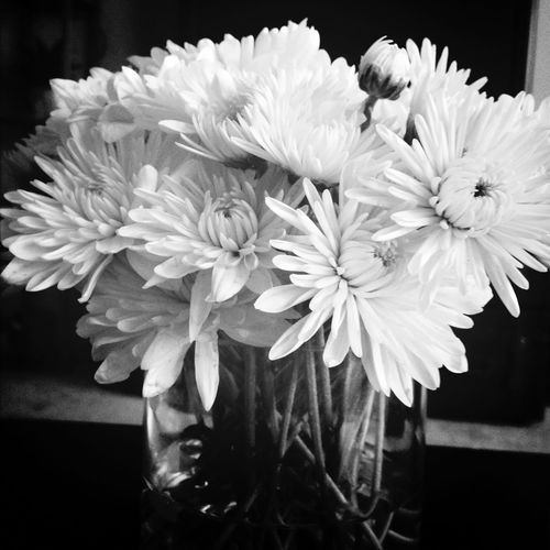 The flowers on my coffee table. First Eyeem Photo