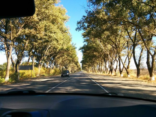 Summer road to Rostov-on-Don. Road Nature Outdoors Nofilter Non-urban Scene