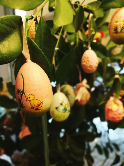 Easter is coming Easter Eggs Easter Tree Celebrations Fun
