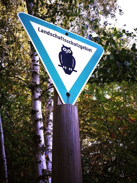 Road Sign Nature Growth Outdoors Sign Trees And Nature Forest Forestwalk Woods Park Berlin Safety Safety Sign German Signs